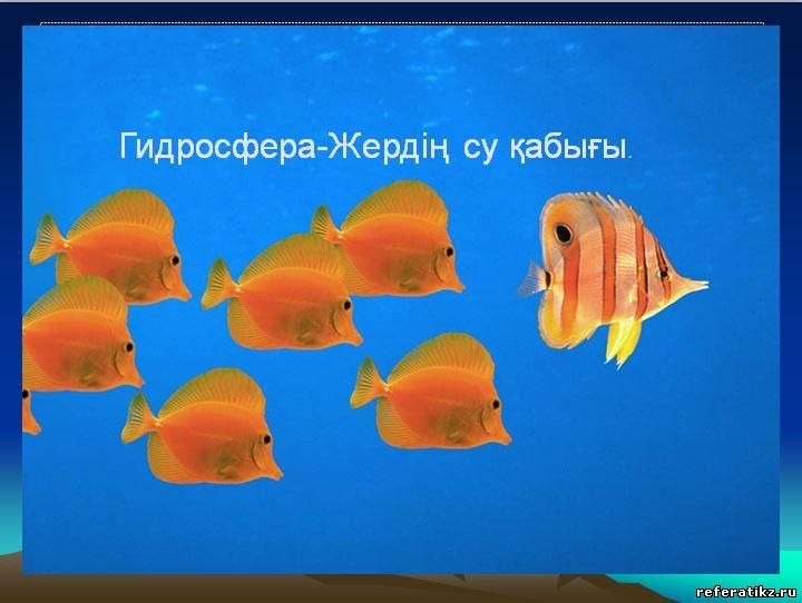 Издатель. Языки. Версия программы. 0.84Mb.